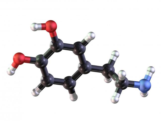 dopamina2