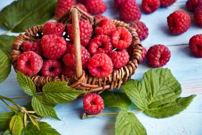 fibromialgia alimentazione