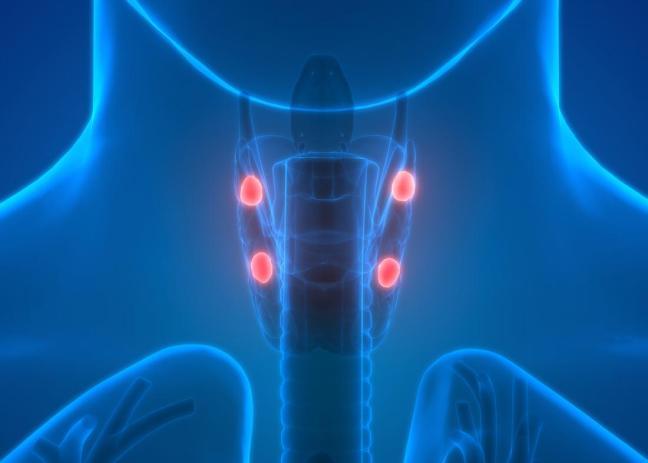 ghiandola tiroidea farmajet