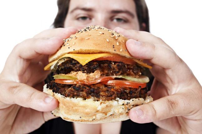 hamburger farmajet