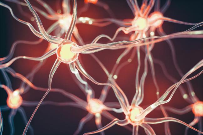 neurone farmajet.jpg