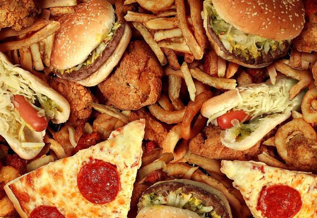 grassi animali.jpg