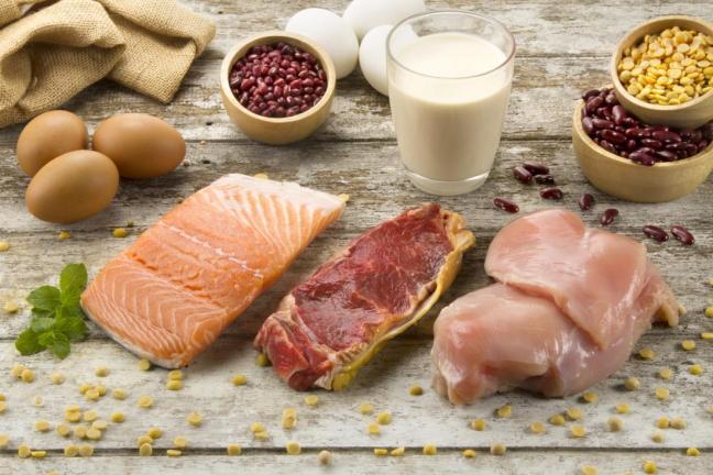 proteine animali e vegetali.jpg