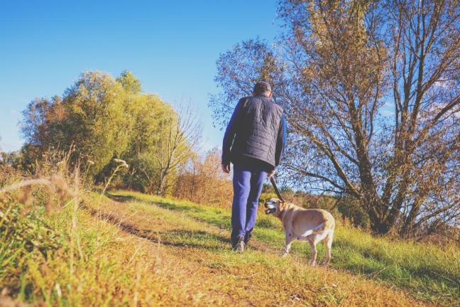 camminata in campagna.jpg